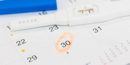 Ovulační kalendář